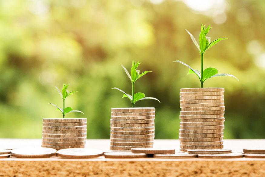 20% din venituri – economii și investiții